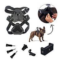 Набор креплений AIRON ACS-3 на собак для экшн-камер AIRON, GoPro, SONY, ACME, Xiaomi, SJCam, EKEN, КОД: 1475699