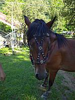 Уздечка для лошади кожаная