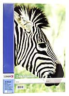 Альбом для рисования LANDRE А3 R2-44012101, КОД: 1705053