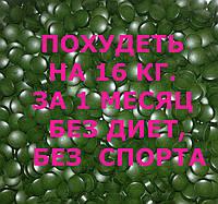 Новый жиросжигатель Спирулина с L-карнитином для похудения. Похудеть на 16 кг. в месяц!
