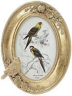 Фоторамка Tudor Птицы 10 х 15 см Золотистый psgBD-450-138, КОД: 1033775