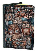 Обложка для паспорта DevayS Maker DM 03 Совы Разноцветная 01-0103-428, КОД: 1238350