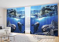 """Фото Шторы """"Дельфины 3"""""""