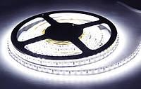 Светодиодная лента Slim Standart 3528 120 LED/m 9,6W/m IP33