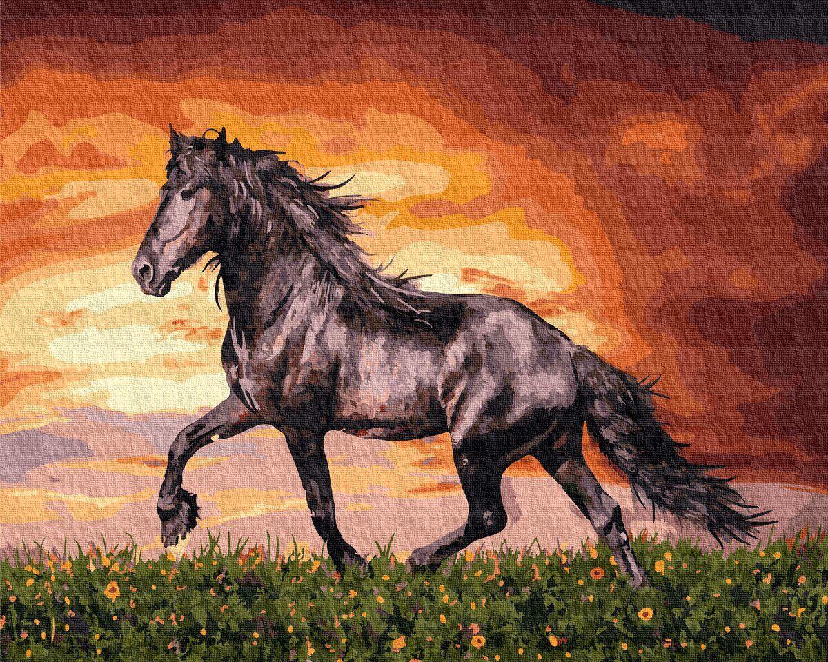 BK-GX34880 Картина для рисования по номерам Чёрный конь, Без коробки