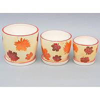 """Комплект вазонов для цветов """"Seasons"""" 9A52, в наборе 3 шт, 3 вида, керамика, вазон для комнатных растений,"""