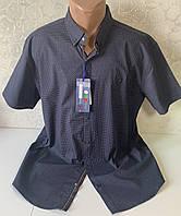 Мужские турецкие рубашки шведки больших размеров с двумя карманами  супербаталы, фото 1