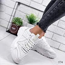 Кроссовки женские белые эко кожа легкие белые шнуровка, фото 3