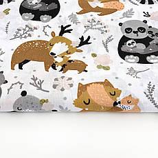 """Польская хлопковая ткань """"Олени, панды, еноты, лисички на белом"""", фото 2"""
