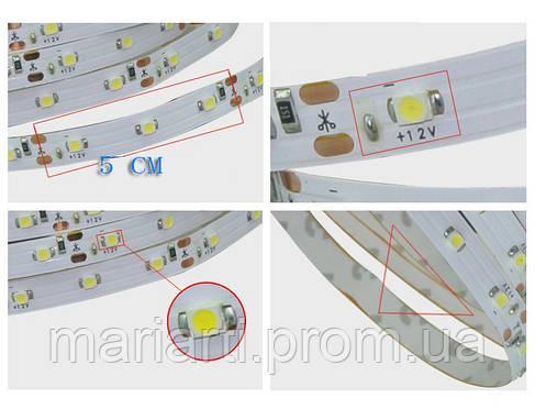 Яркая светодиодная лента, белая! 3528 smd, 300 Led - белая! 5 метров! LED лента!, Акция, фото 2