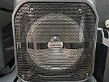 Аккумуляторная беспроводная колонка чемодан Ailiang LiGE-1709, портативная Bluetooth акустика, сабвуфер, фото 6