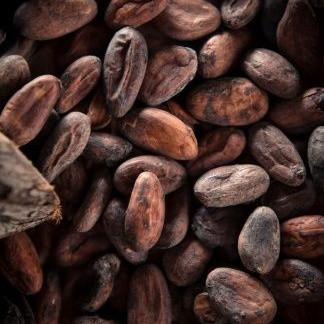 Какао бобы отборные, 50 грамм