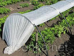 Агроволокно біле, 3,2 м, СУФ 30, Белое агроволокно, агроткань (спанбонд) 30 г/м кв., фото 2