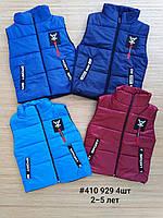 Жилет куртка детская ( С 2-5 лет )