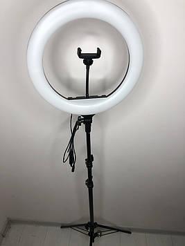 Професійна кільцева світлодіодна LED лампа 36 см 36 ВТ з тримачем для телефону і штативом