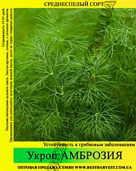 Семена укропа «Амброзия» 25 кг (мешок)