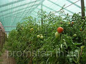 Сетка затеняющая KARATZIS (Греция) 85% 4*50м, фото 2