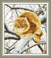 К-010 Рыжий кот