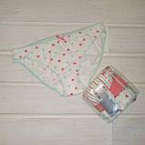 Трусики-бикини женские хлопковые LAMA MBB 120-18 M  3 шт в уп, фото 3