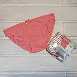 Трусики-бикини женские хлопковые LAMA MBB 120-18 L  3 шт в уп, фото 2
