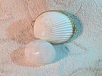 ОПТОМ Дезодорант Кристалл в тихоокеанской раковине Cockles и пакете, цельный минерал, 55г