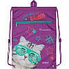 Школьный набор Kite Rachael Hale рюкзак пенал сумка SET_R20-501S, фото 3