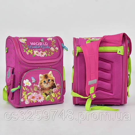 Рюкзак школьный N 00149, 1 отделение, 3 кармана, спинка ортопедическая, фото 2