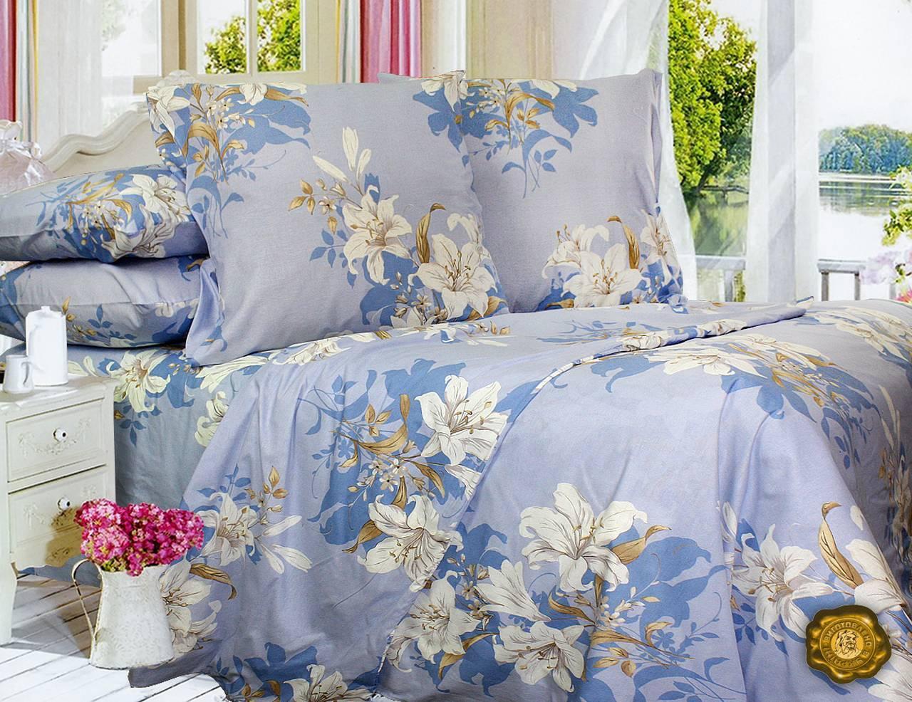 Еней-Плюс Евро постельный комплект Т0415 Еней-Плюс, цвет: Голубой, синий, белый