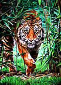 Картина за номерами Тигр у бамбуковому гаю, кольоровий полотно на картоні, 40*50 см, без коробки