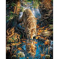 Картина раскраска по номерам на холсте 40*50см Babylon VP930 Волк на водопое