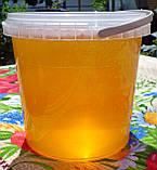 Натуральный акациевый мёд урожая 2020 года; доставим по Боярка, фото 2