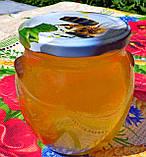 Натуральный акациевый мёд урожая 2020 года; доставим по Боярка, фото 6
