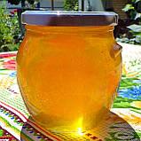 Натуральный акациевый мёд урожая 2020 года; доставим по Боярка, фото 7
