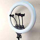 ОПТ Професійна кільцева LED лампа SLP-G63 55 см з трьома власниками, штативом і пультом, фото 2