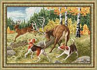 ДЖ-031 Охота на оленя
