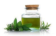 Алтайвитамины Масло мяты - Антисептик , спазмолитик