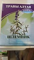 Шлемник байкальский трава (30гр.,Россия)