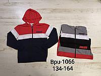 Пайты для мальчиков, Glo-story, 134,140,146,152,158,164 см,  № BPU-1066