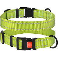 Ошейник для Собак BronzeDog Active Нейлоновый со Светоотражением и Пластиковой Пряжкой Салатовый S
