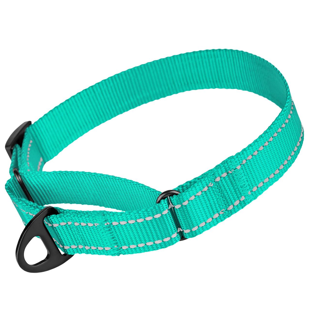 Ошейник для собак Мартингейл Bronzedog Active нейлоновый со светоотражением бирюзовый L