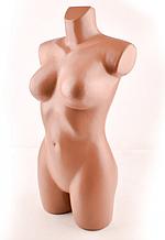 Манекен торс женский Венера ( ровная)