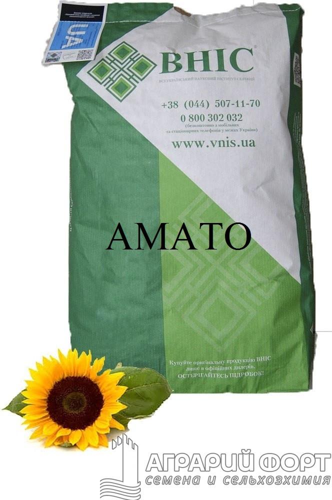 Семена подсолнуха Амато /ВНИС/ Насіння соняшнику Амато /ВНІС/