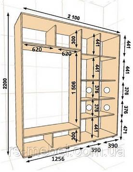 Шкаф-купе 2100*450*2200, 2 двери (Алекса)