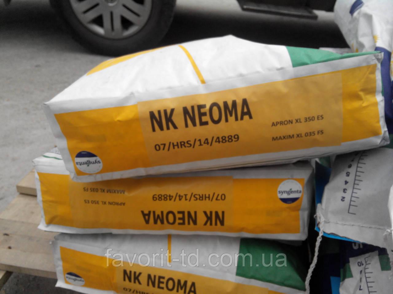 Подсолнечник Сингента НК Неома