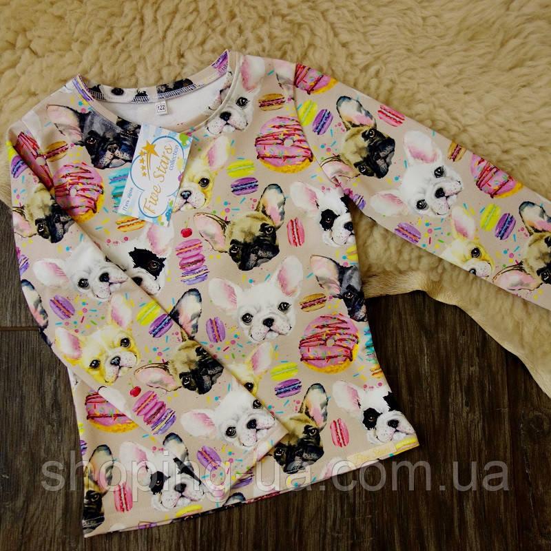 Реглан для девочки собачки Five Stars KD0355-104р