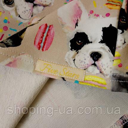 Реглан для девочки собачки Five Stars KD0355-104р, фото 2