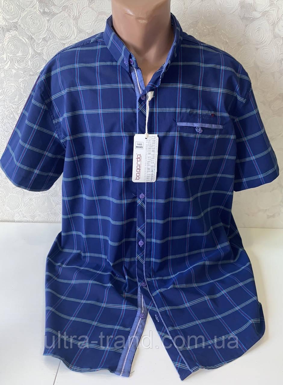 Мужские турецкие рубашки шведки больших размеров