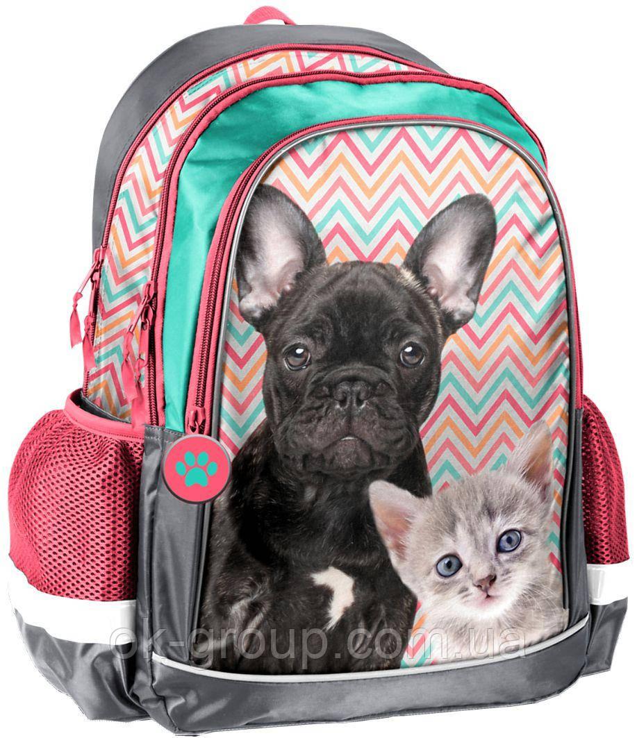 Школьный рюкзак для девочки Paso 18-081PK