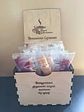 Вітамінна скринька «Натуральна фруктово-ягідна пастила без цукру», фото 2