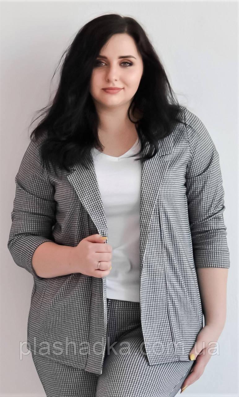 Женский пиджак трикотажный большого размера 3/4 рукав, расцветка  гусиная лапка Van Gils 1034